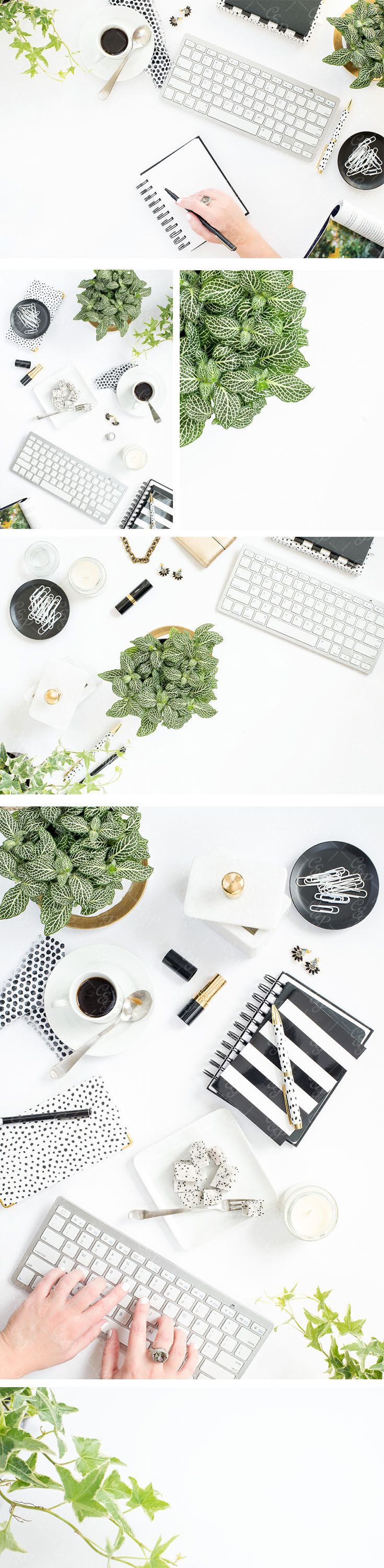Greenery Styled Stock Photography, Pantone 2017, Black and White styled stock, Cristina Elisa Photography LLC