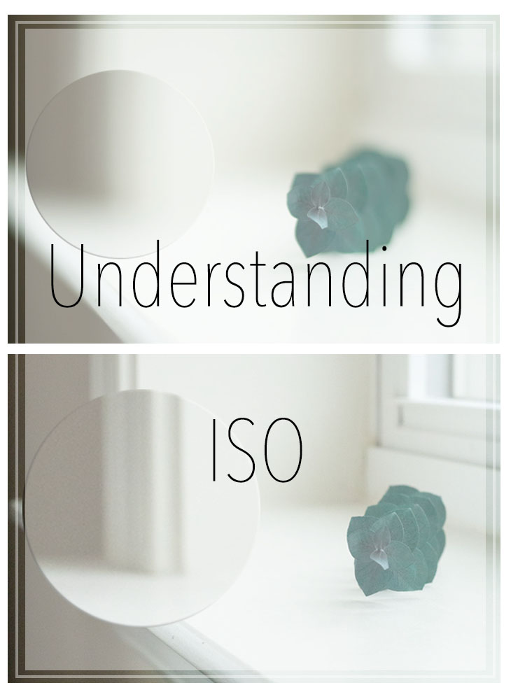 What is ISO, Learning DSLR photography, Photography Tips, ISO vs film speed, Cristina Elisa Photography, LLC